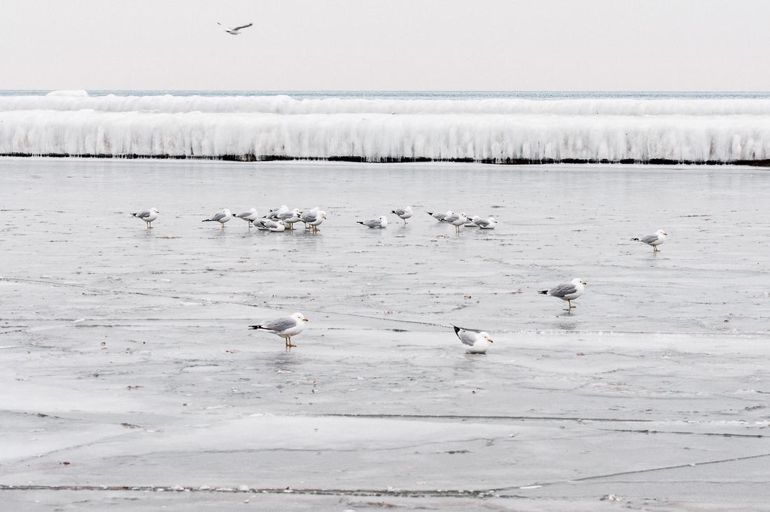 Kanada Ontario zima
